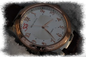 my_chinese_watchblog_seagull_55_001_3