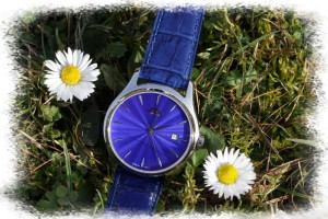 my_chinese_watchblog_beijing_hong_ru_blue_005