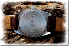 my_chinese_watchblog_vintage_xiangshan_003